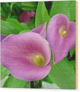 Pink Callas Wood Print