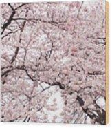 Pink Cherry Blossom Tree Wood Print