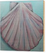 Pink Clam Shell Wood Print