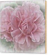 Pink Climbing Roses Wood Print