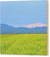 Pink Cloud Over The Mustard Fields Wood Print