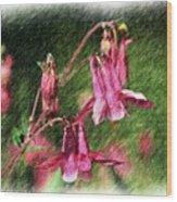 Pink Columbines Wood Print