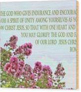 Pink Crape Myrtle Romans 15 V 5 Wood Print