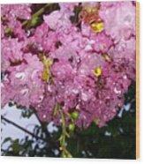 Pink Crystals Wood Print