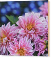 Pink Dahlias On Lobelia Wood Print