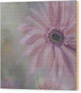 Pink Daisies Wood Print