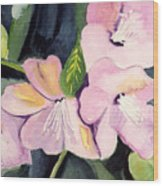 Pink Dancing Flowers Wood Print