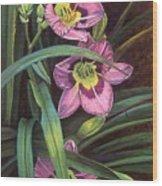 Pink Daylilys Wood Print