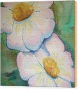 Pink Disc Flowers Wood Print