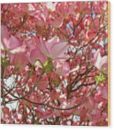 Pink Dogwood Flowering Tree Art Prints Canvas Baslee Troutman Wood Print