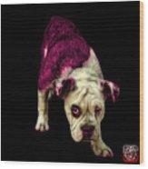 Pink English Bulldog Dog Art - 1368 - Bb Wood Print