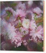 Pink Flowering Almond Wood Print