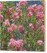 Pink Flowering Shrub Wood Print