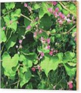 Pink Flowering Vine2 Wood Print