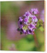 Pink Flowers . 40d4800 Wood Print