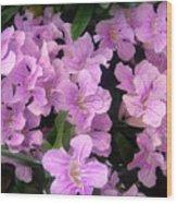 Pink Flowers. 6-22-17 Wood Print