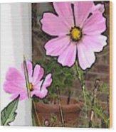 Pink Flowers Of Summer Wood Print