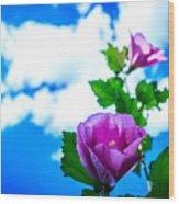 Pink Flowers On A Blue Sky Wood Print