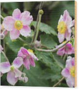 Pink Flowers Over Green Wood Print