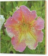 Pink Flowers P80 Wood Print
