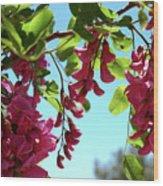 Pink Flowers Virginia City Nv Wood Print
