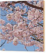 Pink Fluffy Branches Wood Print