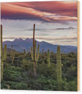 Pink Four Peaks Sunset  Wood Print