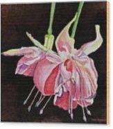 Pink Fuscia Wood Print