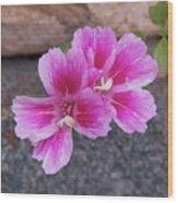 Pink Hands Wood Print