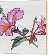 Pink Hibiscus And Geranium  Wood Print