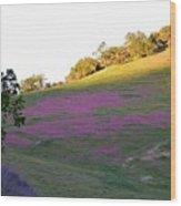 Pink Hills Wood Print
