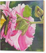 Pink Hollyhock Wood Print