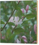Pink Honeysuckle Wood Print