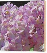 Pink Hydrangea Flower Floral Art Prints Baslee Troutman Wood Print