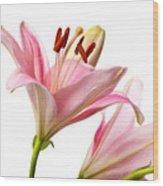 Pink Lilies 03 Wood Print
