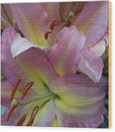 Pink Lillies Wood Print