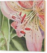 Pink Lily Close Up Wood Print