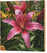 Pink Lily Lush Garden Wood Print