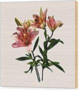 Pink Lily Trio Wood Print
