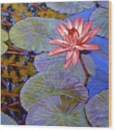 Pink Lily With Silver Pads Wood Print