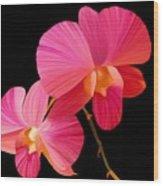 Pink Lux Wood Print