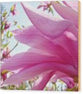 Pink Magnolia Flower Art Print Botanical Tree Baslee Troutman Wood Print