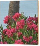 Pink Oleander Wood Print