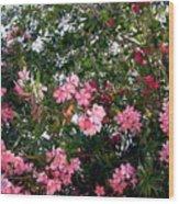 Pink Oleanders Wood Print