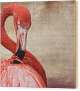 Pink On Brown Scratch Wood Print