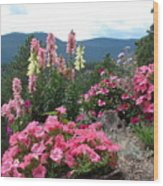 Pink On The Mountain Wood Print