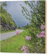 Pink On The Parkway Wood Print