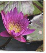 Pink On Water Wood Print