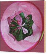 Pink Orb Wood Print