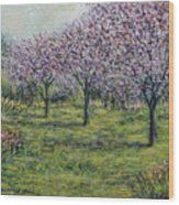 Pink Orchards Garden Wood Print